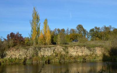Petrašiūnų - Raudonpamūšio dolomito atodanga