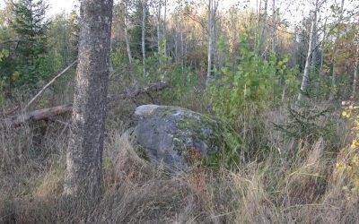 Guostagalio akmuo