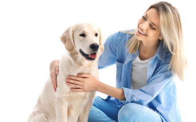 Gyvūnų priežiūra ir veisimas
