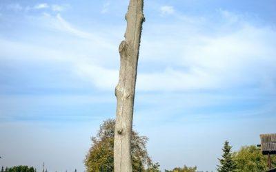 Birjagalos kapinės4