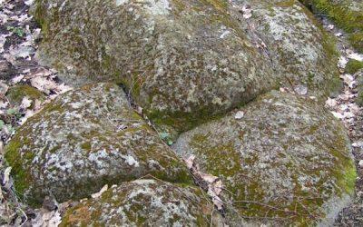 Zigmantiškių akmuo3