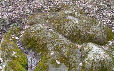 Zigmantiškių akmuo4