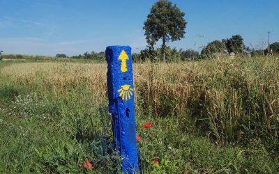 Camino Lituano 1